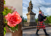 Scottish Rose and Bag Piper, Stirling Castle © 2018 Keith Trumbo