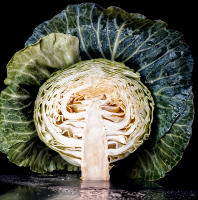 Cabbage - Vogue  © 2017 Keith Trumbo