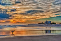 Sunset and Running Dog, Flying Point Beach, Bridgehampton © 2017 Keith Trumbo